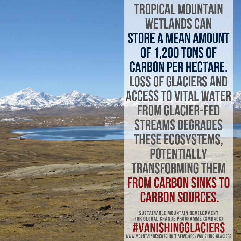Vanishing Glaciers 10
