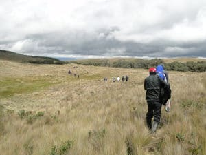 Field visit to the grasslands of the Zurucay River Ecohydrological Observatory during the AGU Chapman Conference on Emerging Issues in Tropical Ecohydrology. (Photo credit: iDRHICA)