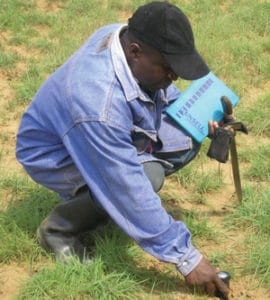 Measuring soil moisture and pH in the field.