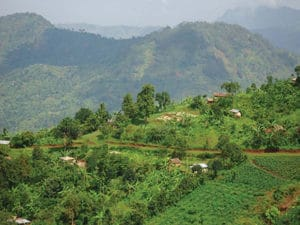 Village with gardens on the sides of Mt. Elgon National Park.