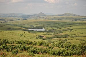 Vital grasslands in the Eastern Great Escarpment of South Africa