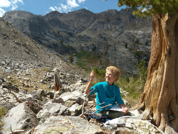 Connie Millar in the East Humboldt Range, Nevada